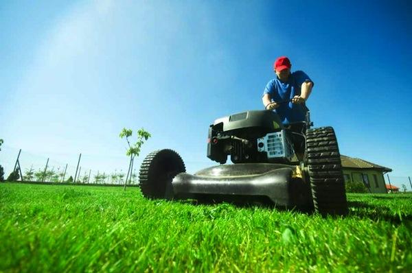 empleo servicio domestico jardinero barcelona