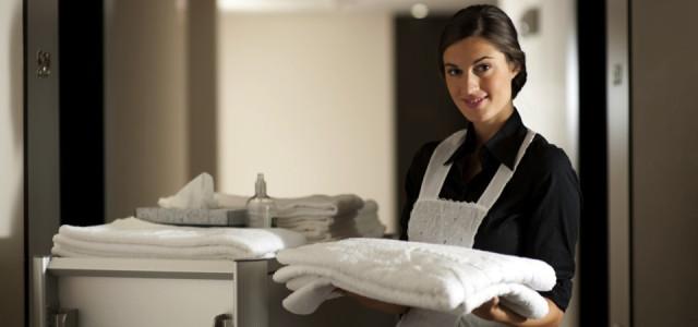 empleada hogar profesional